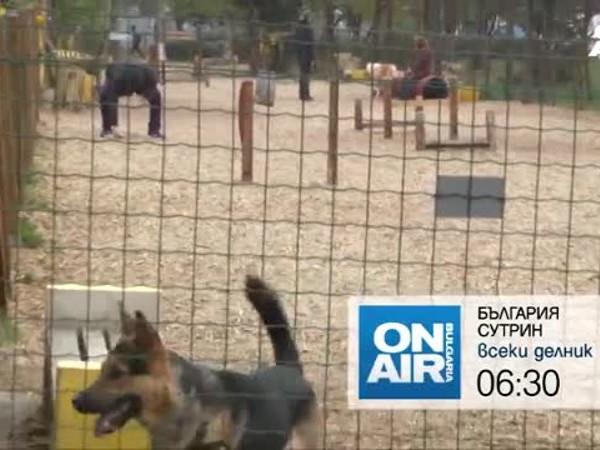 """Снимка: Трагедията в Габрово и още в """"България сутрин"""" на 4 юли"""