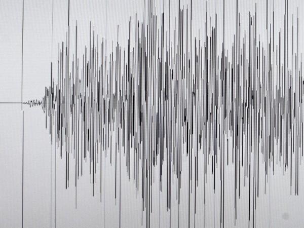 Земетресение с магнитуд 4,1 по скалата на Рихтер е регистрирано