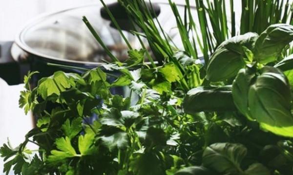 5 билки, които намаляват задържането на излишни течности