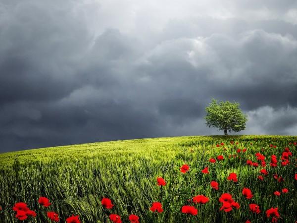 Предимно слънчево с временни увеличения на облачността ще е времето