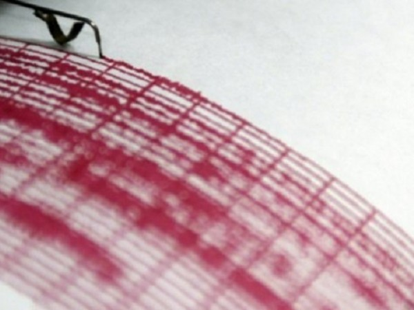 Земетресение с магнитуд 4,6 е регистрирано в северната част на