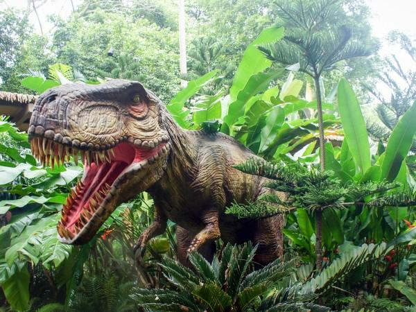 Палеонтолозите от Националния природонаучен музей на БАН ще участват в