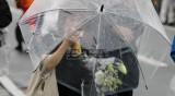 Проливни дъждове в Западна Япония, десетки хиляди са евакурани