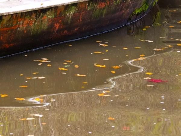 Тяло на мъж е открито в напоителен канал близо до