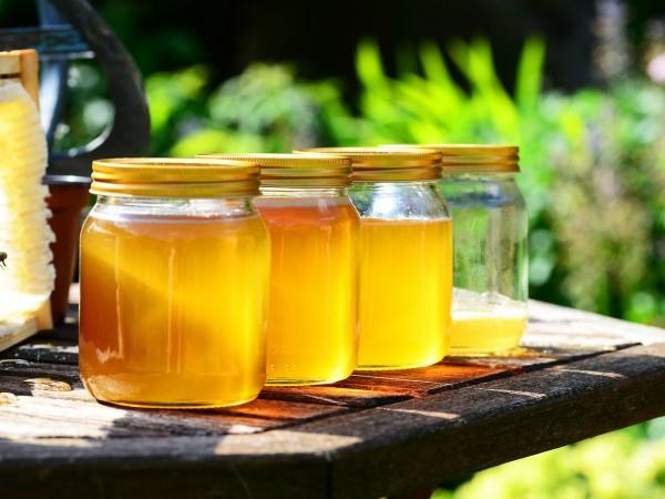 Българските пчелари алармират за нов удар по бранша. Те са