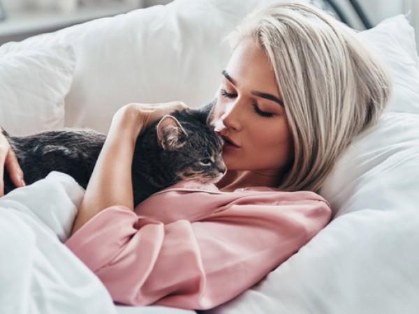 Снимка: Стопанките на котки са най-добрите съпруги. Защо?