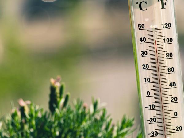 Снимка: Оряхово и Русе днес най-горещи – живакът отчете 37 градуса