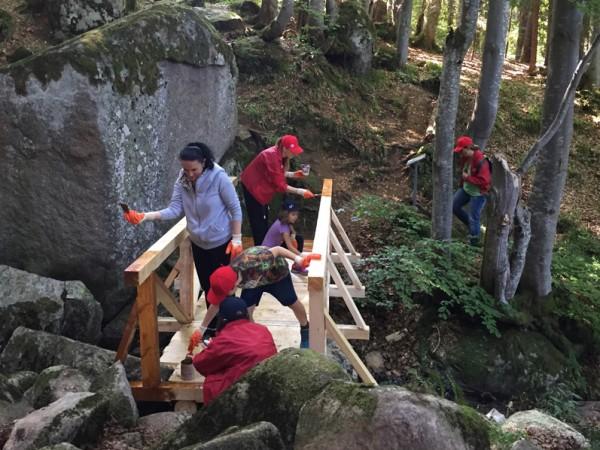 Доброволци от Пощенска банка преобразиха изцяло горска пътека в местността