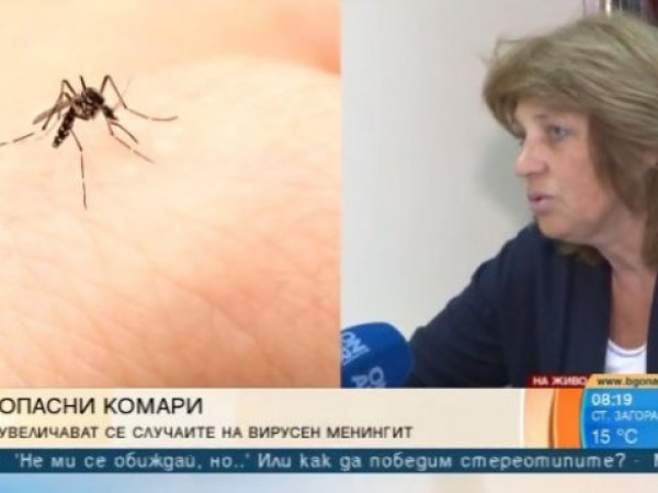 Комари разнасят вирусен менингит у нас. С близо една трета