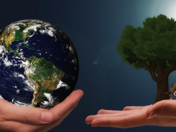 Междуправителственият панел по изменението на климата (IPCC), част от структурата