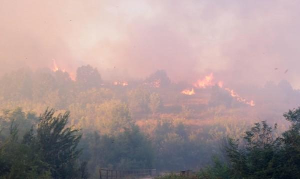 "Нов пожар край ""Струма"": Горят сухи треви край Българчево"