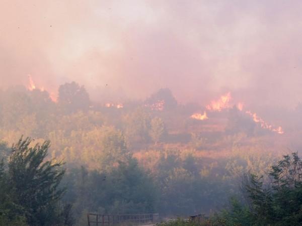 """Нов пожар има около магистрала """"Струма"""", след като горят сухи"""