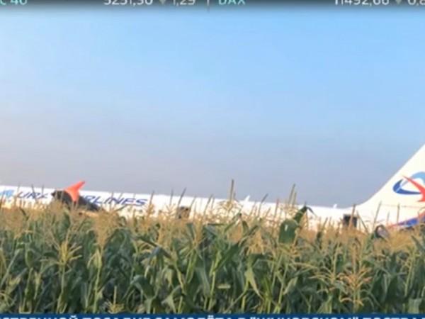 Снимка: Руски самолет кацна аварийно в нива с царевица