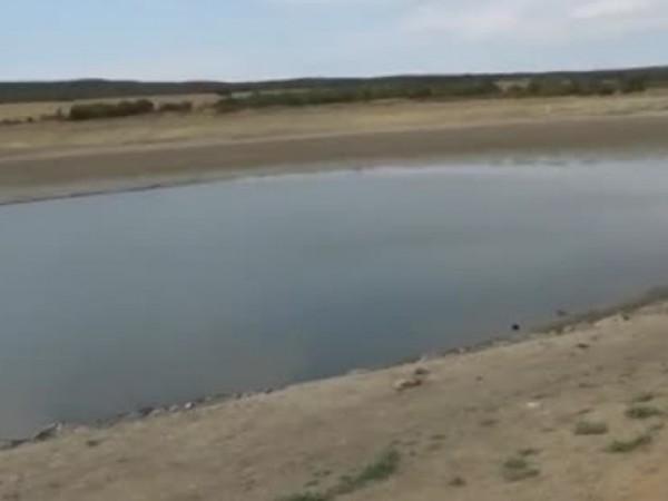Еколози алармират за измиране на рибите в язовир Ръжица край