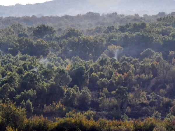 Голям пожар гори край софийското село Реброво, съобщи Нова тв.