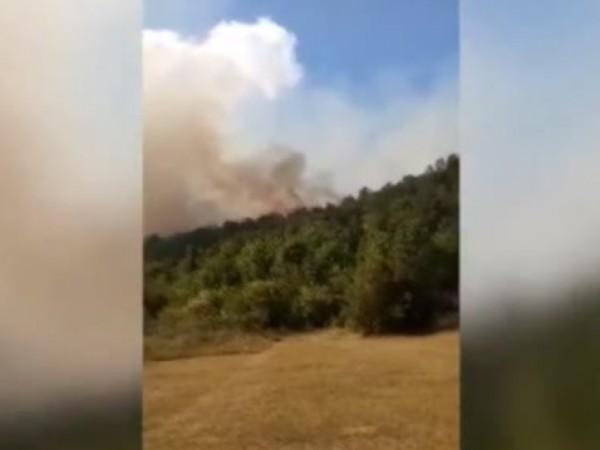 Пожарът в землището между селата Луково, Реброво и Владо Тричков