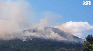 Потушени са пламъците край Реброво, подозират умишлен палеж