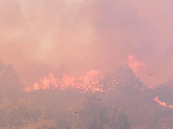 Пламъци са обхванали склад за вторични суровини на фирма в