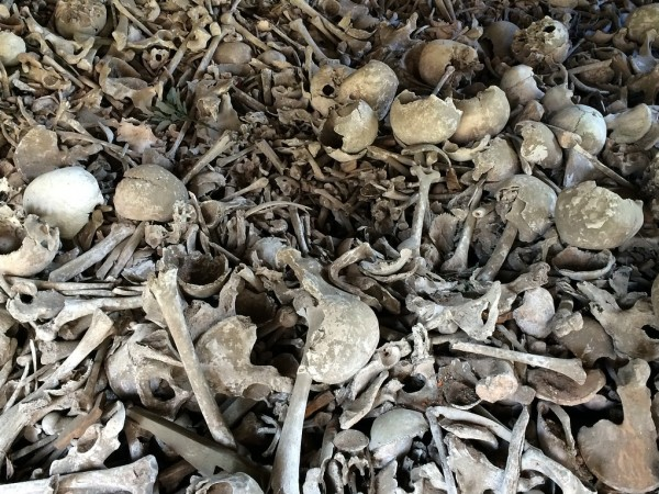 Снимка: Зловещо: Земеделец откри човешки останки в село до Враца