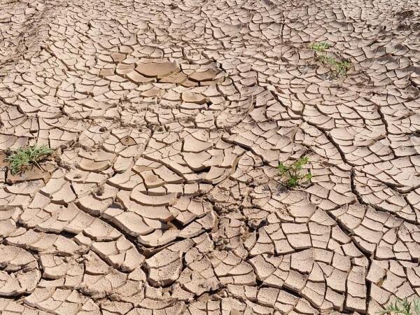 Повишаването на средните глобални температури с 2 градуса Целзий в