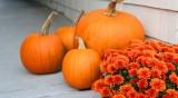 Есента: От лятна жега през септември, до зимен студ през ноември