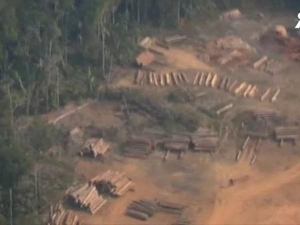 Коренното население на Амазония се бори за своя дом и