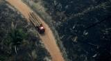 Картината на опустошението: Изгорелите гори на Амазония