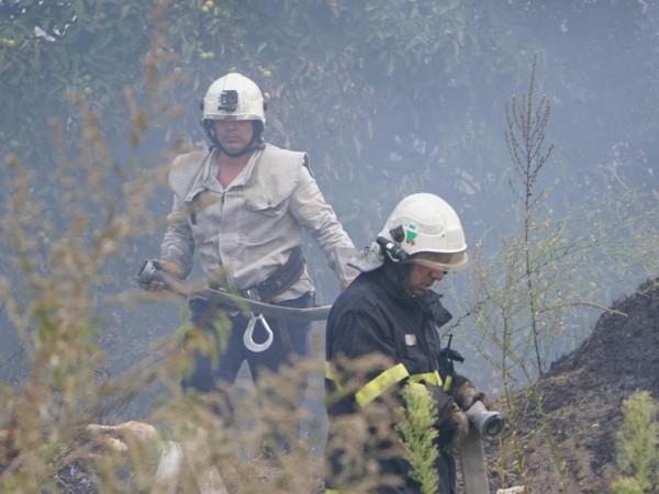 Пожар на площ около 1000 декара по първоначални оценки е