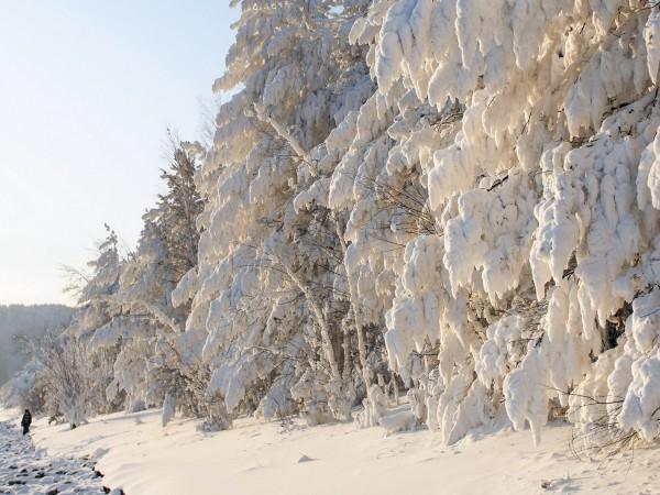 Снимка: Ако ледът в Сибир се разтопи – Европа става негодна за живот
