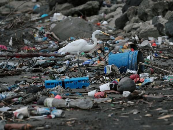 Борбата с пластмасите също опира до проблема богати и бедни.