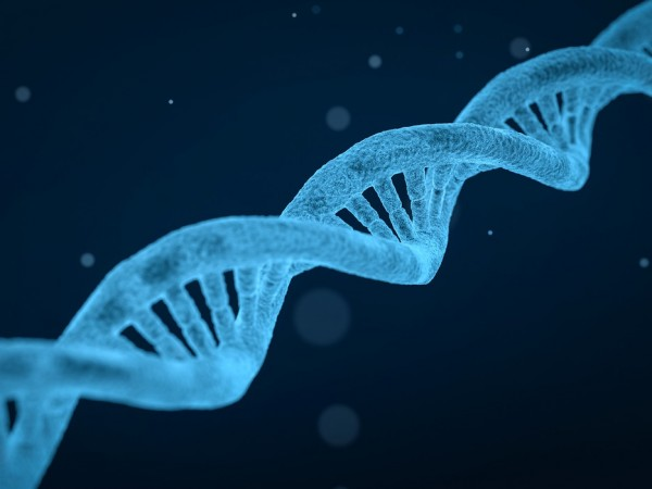 Снимка: СЗО създава регистър за следенето на ГМО хората