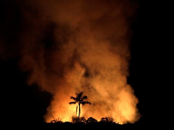 Снимка: Амазония продължава да гори – избухнали са 4 хил. нови пожара
