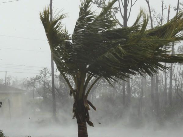 Най-малко петима души са загинали на Бахамските острови заради урагана