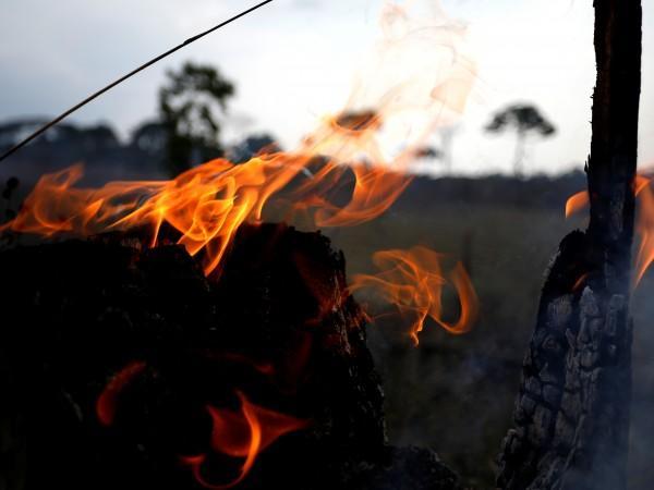 Снимка: В Амазония: Обичайна практика - чистя земята с огън, за да живея!