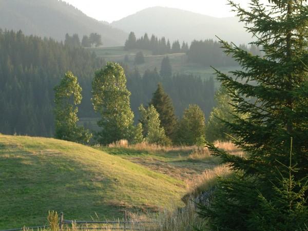 Национален културно-туристически календар ще привлича в България неорганизирани туристи и