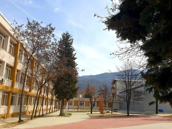 435 училища, детски градини и комплекси, както и 13 университета