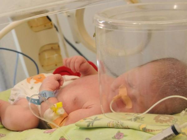 Родители са изправени на нокти заради хаос със стволовите клетки