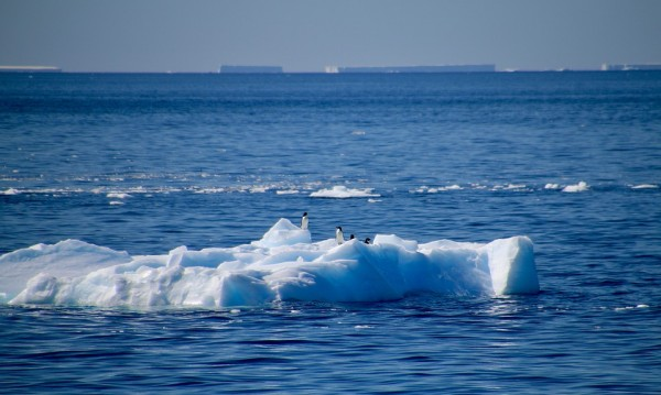 МОСВ дава 200 000 лв. за пречиствателна станция на Антарктида