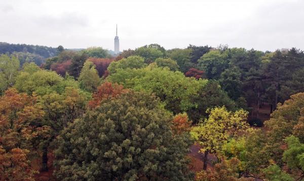 Златна есен в четвъртък: Тихо, топло, слънчево