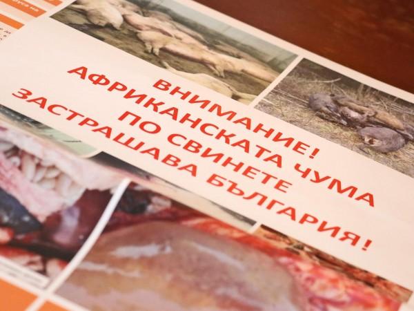 Повече от 1100 стопани от Благоевградско, умъртвили доброволно домашните си
