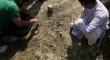 Индийски ужас – намериха погребано новородено в гърне