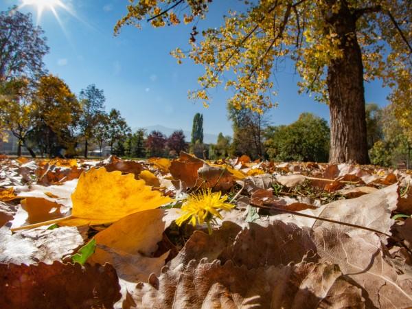 Топлата и слънчева есен продължава да ни радва пред октомври.