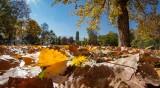 Лятото през октомври остава, градусите отново до 27°C