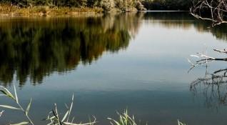 2 тона мъртва риба в река Струма. Проблем - няма...