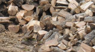 Горските се активизираха, отнемат джипове и незаконни дърва