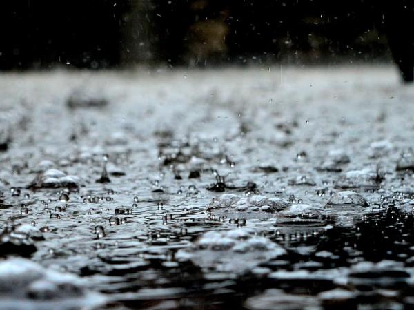 Снимка: Хладно и дъждовно. Температурите до 11 градуса
