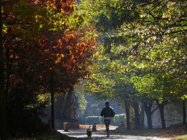 Снимка: Слънчева есен ще ни радва утре, градусите до 25