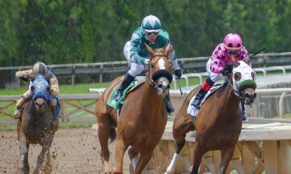 Страстта на милиардерите - залозите на конните надбягвания