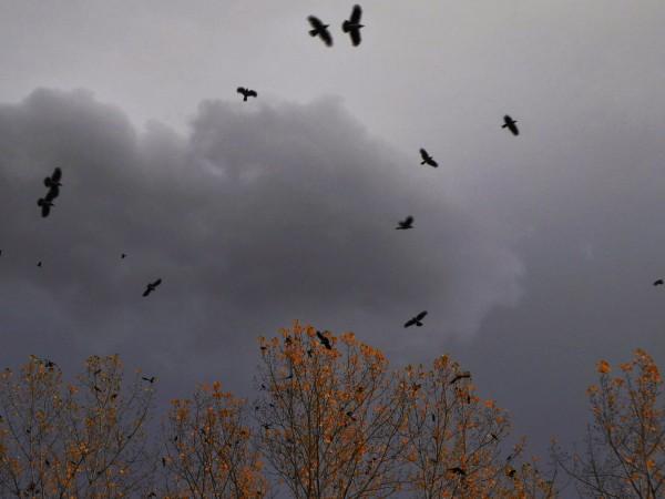 Снимка: Времето днес: Облачно и мъгливо в низините