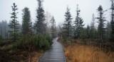 Времето днес: Облачно, след обяд - валежи